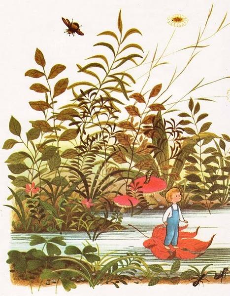 vintage garden swamp kids book