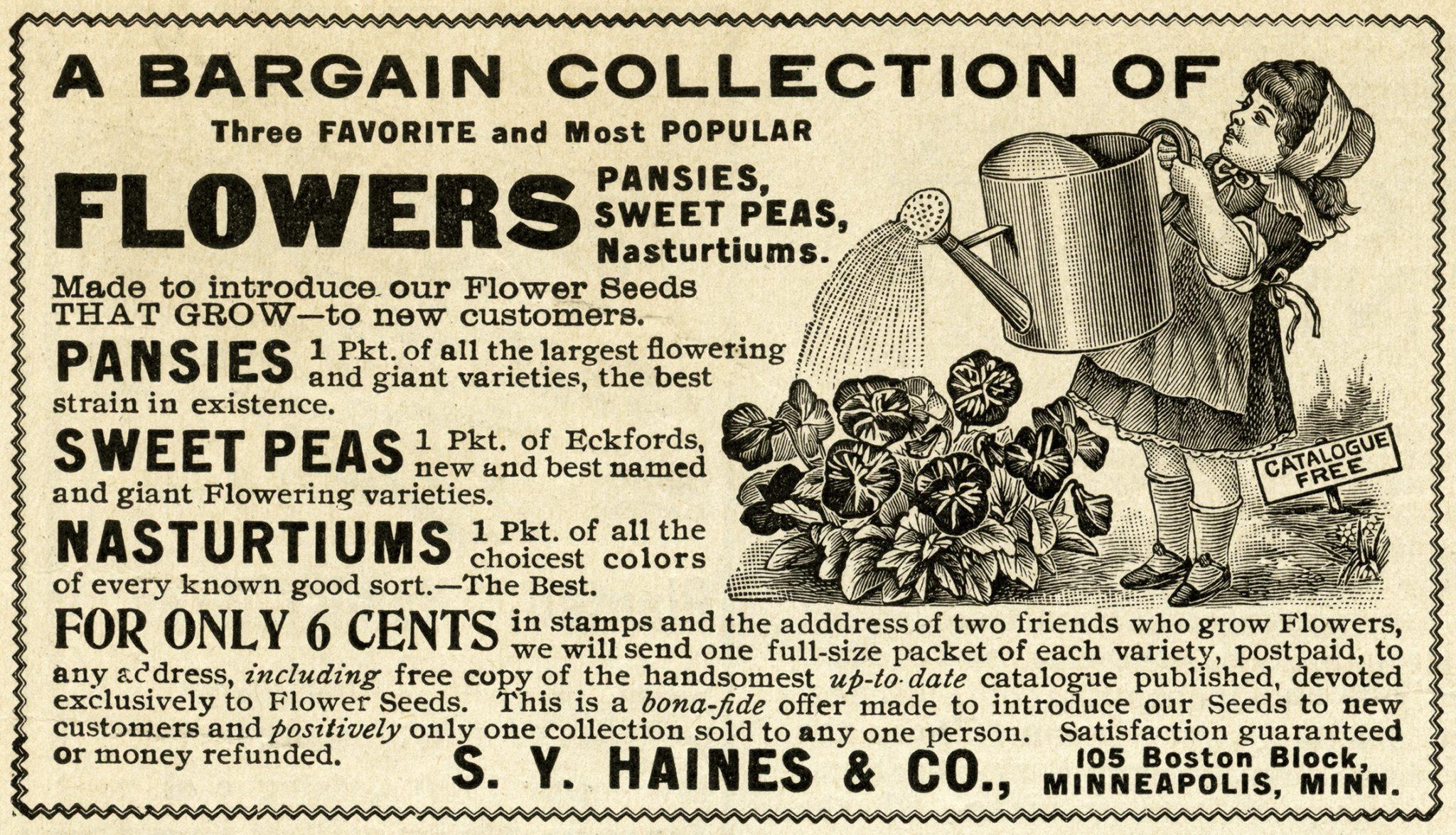 vintage garden veggie advertisement 01