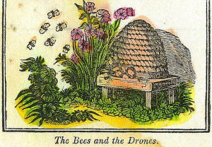 A colorful vintage illustration of a beehive with flowers and bees
