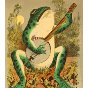 public domain frog illustration 1
