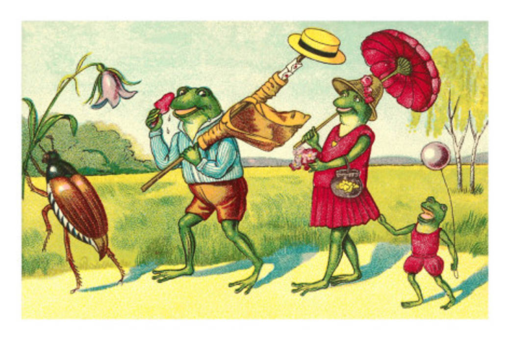 Frog family on vacation.