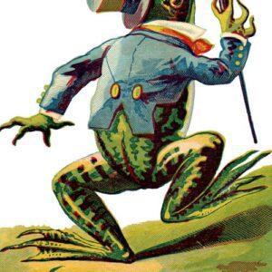 public domain frog illustration 8