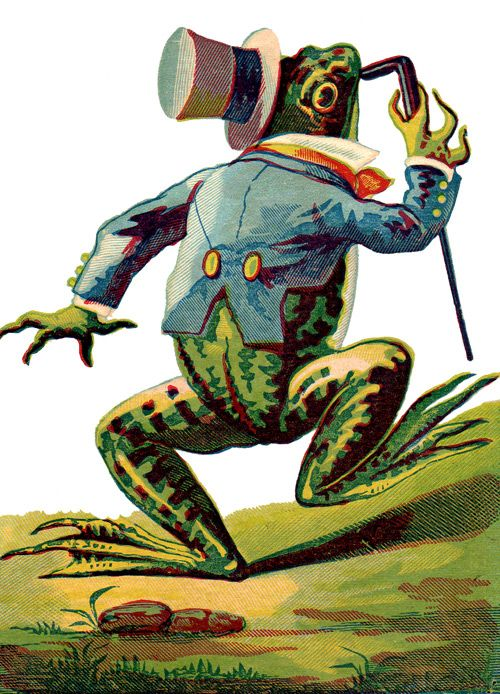public domain frog illustration 8