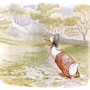 free public domain vintage illustration of ducks 1 beatrix potter