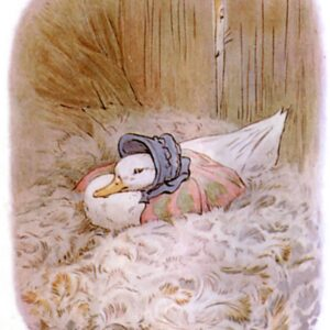 free public domain vintage illustration of ducks 3 beatrix potter