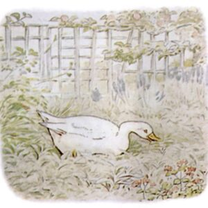 free public domain vintage illustration of ducks 4 beatrix potter