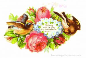 free vintage clipart birds with florals