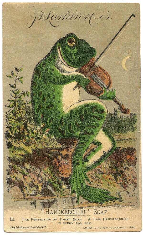 Frog and fiddle. The perfect combo.