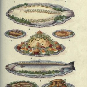 public domain vintage color illustrations of fish dishes and meals