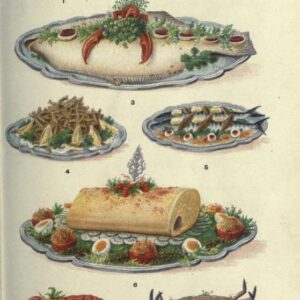 public domain vintage color illustrations of seafood