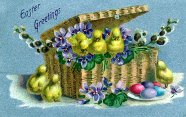 This is a free vintage illustration of Easter chicks and basket from an antique Easter postcard