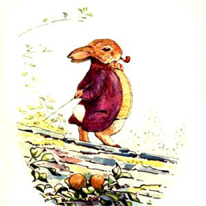 free vintage illustration of beatrix potter benjamin bunny 12