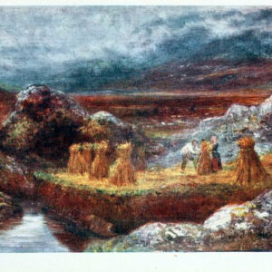 free vintage illustrations of early 20th century ireland 13