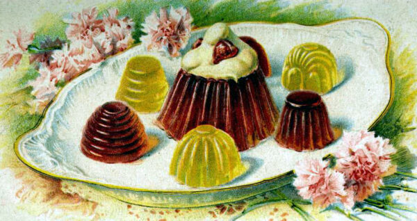 antique jell o dessert illustration