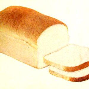 vintage bread loaf and slices illustrations