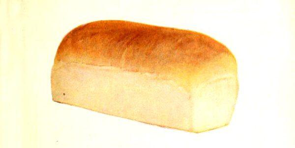 vintage bread illustration from retro cookbook
