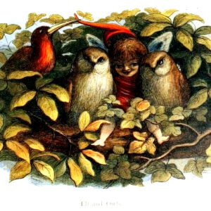 vintage elf and owls in fairyland