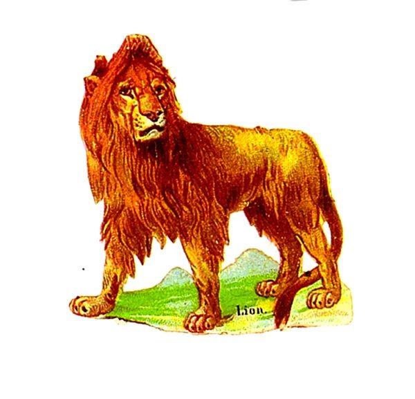 vintage lion 2 scrap