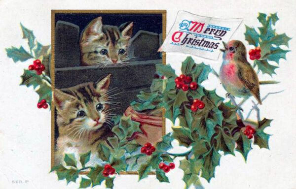 public domain vintage christmas cards with kittens
