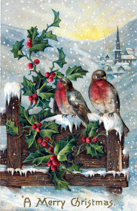 public domain vintage christmas cards with robin birds