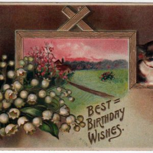 vintage birthday cards cat 20th century public domain