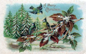 Winter illustrations from vintage christmas cards
