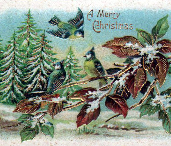 winter illustrations vintage christmas cards