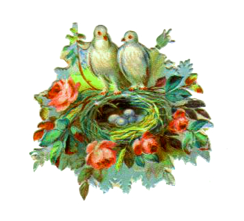vintage bird nest clipart white birds