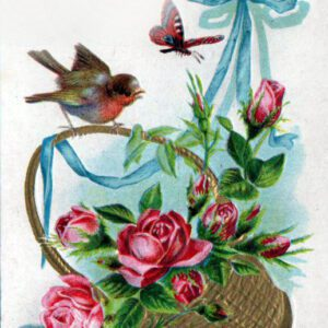 19th 20th century valentines day pictures bird basket ribbon