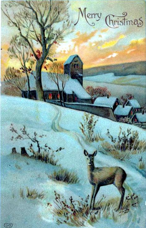 christmas illustration deer
