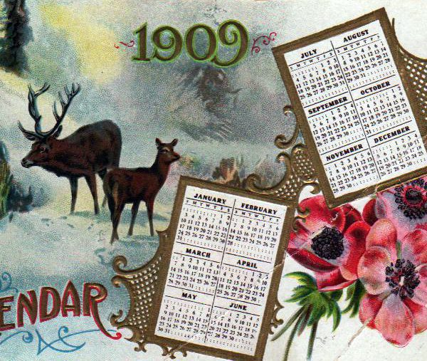 winter animals reindeer calendar