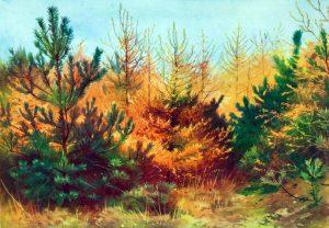 Free vintage landscape of Autumn trees, public domain.