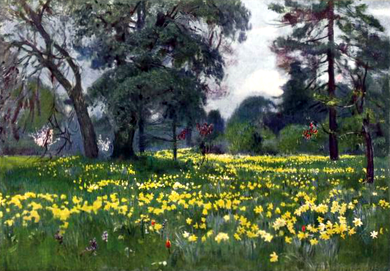 vintage landscape daffodils