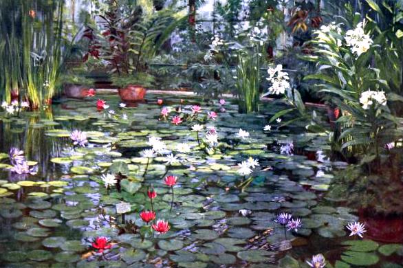 vintage landscape water lilies