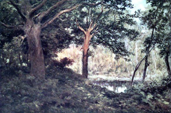vintage landscape woods