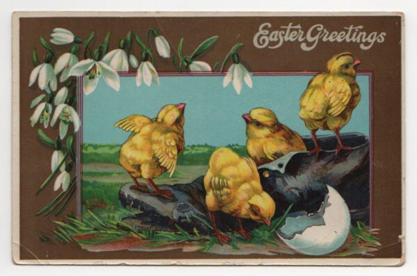 public domain vintage easter greeting chicks with shoe