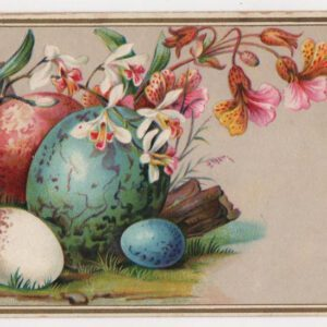 Public domain vintage illustration of eggs in nature